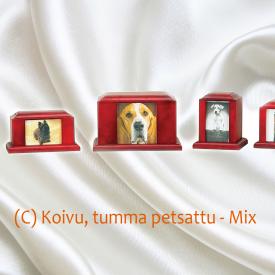 PET-C-Mix